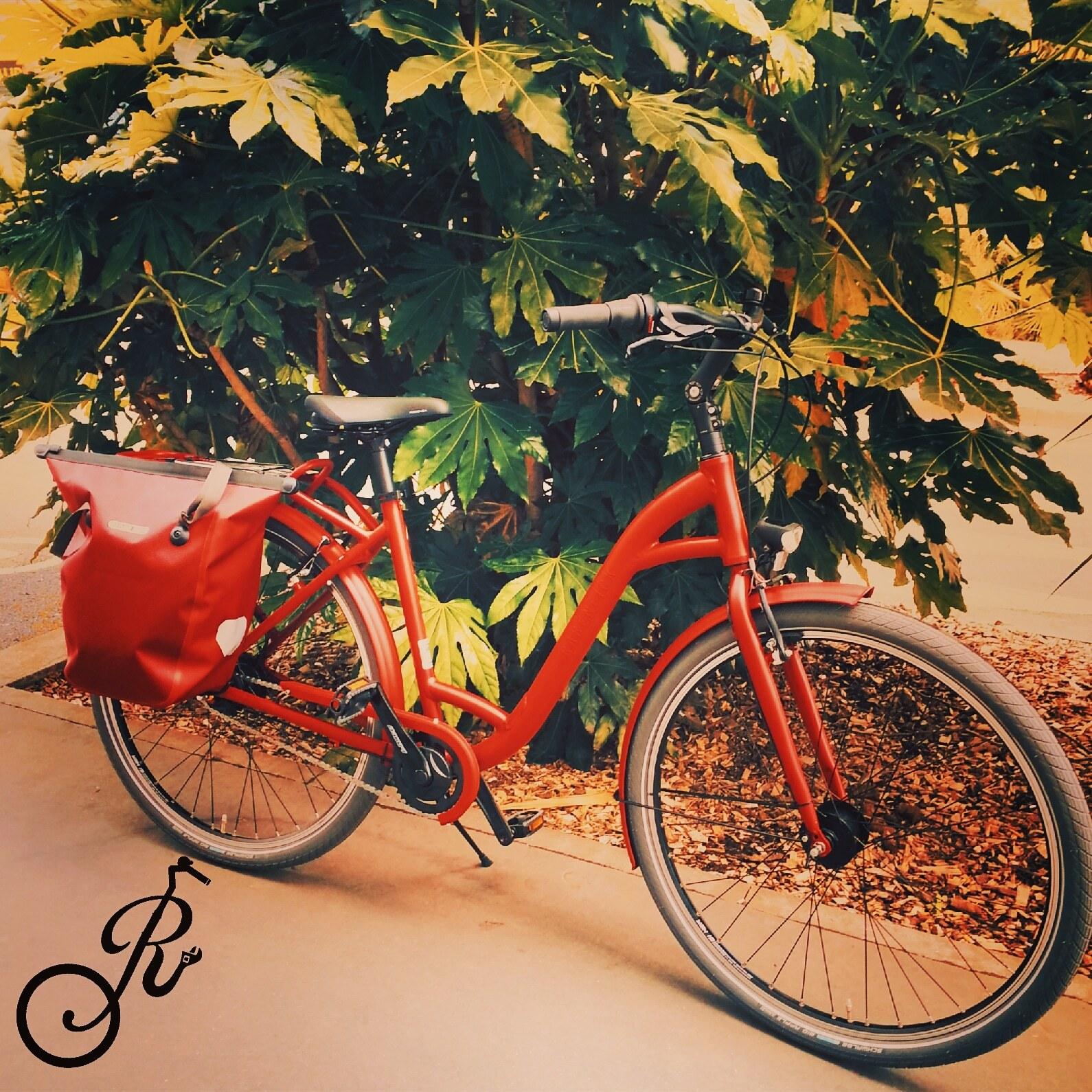Galerie d'image - Raconte-moi un vélo