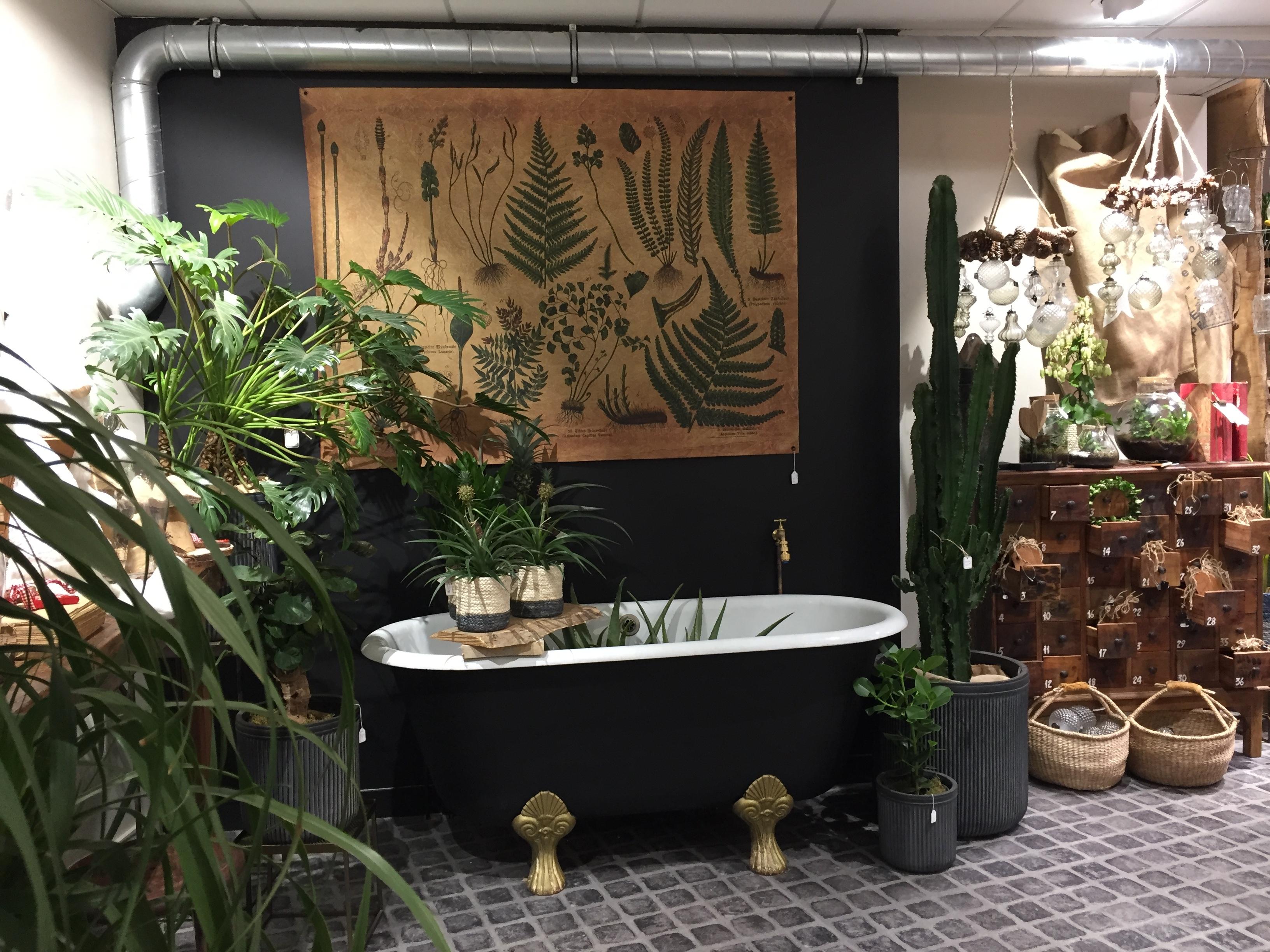 Galerie d'image - L'atelier nature